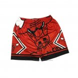 Short Chicago Bulls Mitchell & Ness Big Face Rouge