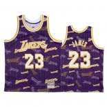 Maillot Los Angeles Lakers Lebron James #23 Hardwood Classics Tear Up Pack Volet